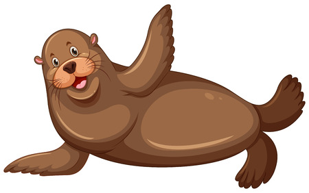 sea lion: Sea lion with happy face illustration