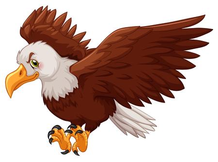 Águila que separa sus alas ilustración