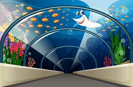 carnivorous fish: Public Aquarium with fish and coral reef illustration