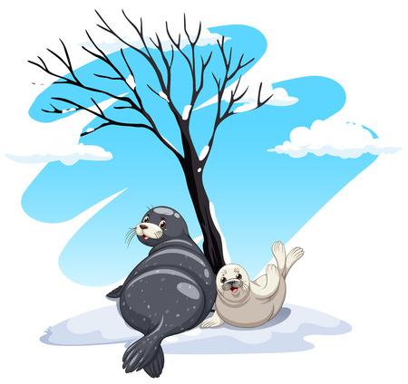 Seals sitting on ice illustration Illustration