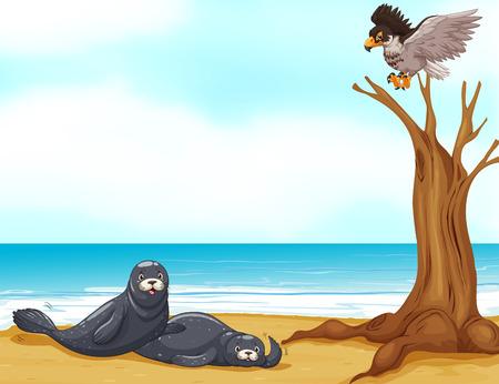 Seals and eagle at sea illustration