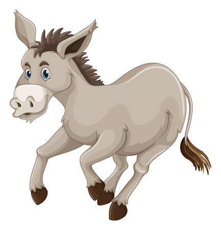 wild donkey: Donkey on white background illustration