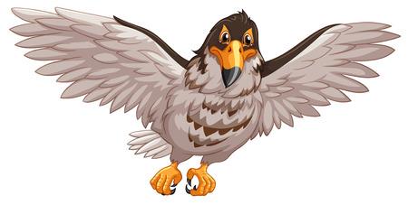 eagle flying: Eagle flying on white background illustration