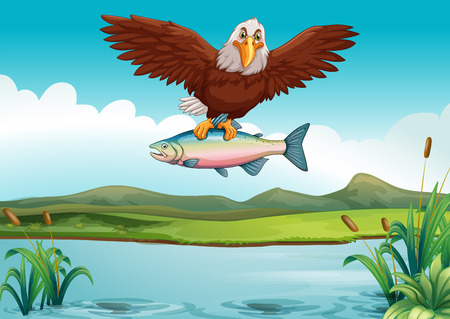 ponds: Eagle catching fish in the lake illustration Illustration