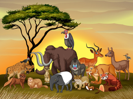 minx: Wild animals in the savanna field illustration
