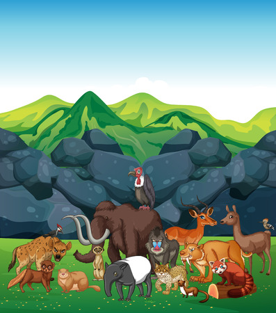 minx: Wild animals in the field illustration