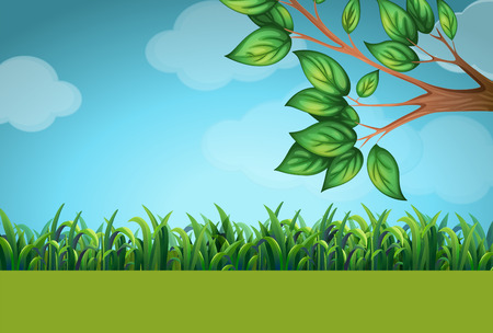 tree grass: Scene with grass and tree illustration