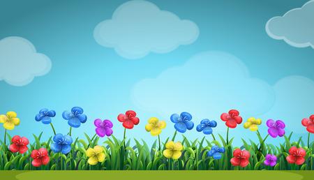 Scène met kleurrijke bloemen in het veld illustratie