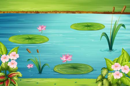 Szene mit Lotus im Teich Illustration Standard-Bild - 57028473