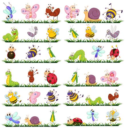 Verschiedene Arten von Insekten auf Gras Abbildung