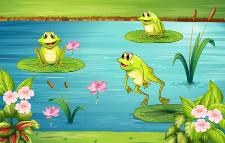 Tre rane che vivono nella illustrazione stagno