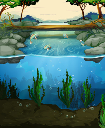 bridge over water: Scene with fish swimming in the river illustration Illustration