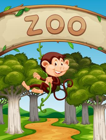 zoologico: Mono que cuelga en la vid en la ilustración zoológico