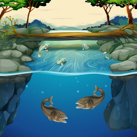 bridge over water: Fish swimming in the river illustration