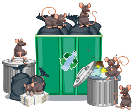 looking for: Rats looking for food from trashcans illustration