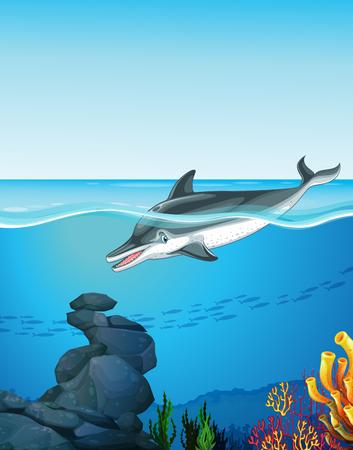 Dolphin swimming under the ocean illustration Illustration