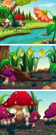 nature scenery: Nature scene with mushrooms and rivers illustration