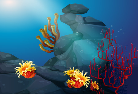 ocean plants: Nature scene with coral reef underwater illustration