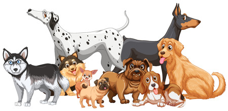 Group of different kind of dogs illustration