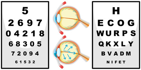 numbers clipart: Human eyes and eyes checking boards illustration