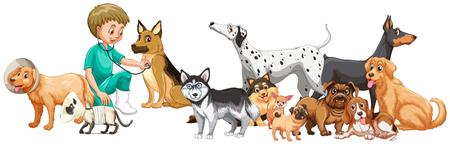 examining: Vet examining many dogs illustration Illustration