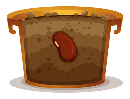 seeds: Seed germination in clay pot illustration Illustration