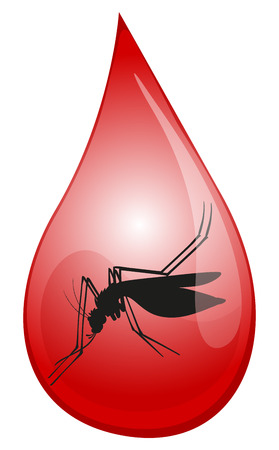 infectious disease: Mosquito in drop of blood illustration