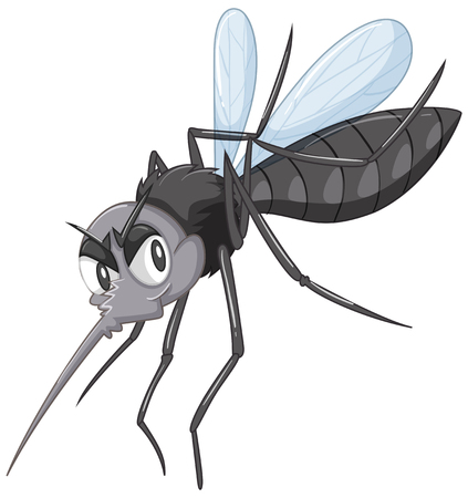 infectious disease: Wild mosquito in black color illustration Illustration