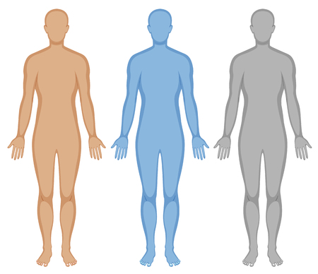 Human body outline in three colors illustration Vectores