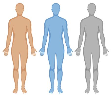 silueta humana: silueta de un cuerpo humano en tres colores ilustración