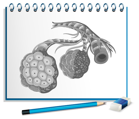 note paper background: Human organs with cancer on paper illustration