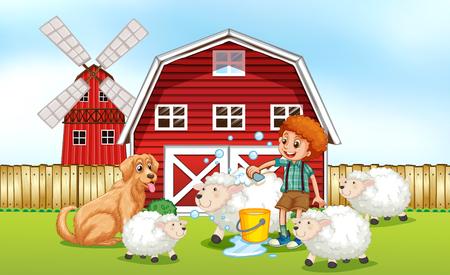 Boy giving sheep bath in the farm illustration