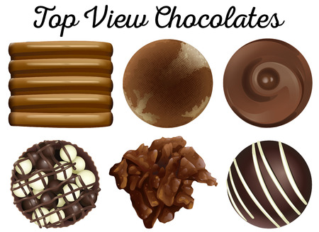 chocolate truffle: Top view chocolates in different shapes illustration