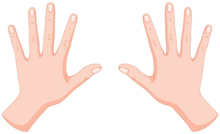 Ludzkie ręce lewej i prawej ilustracji