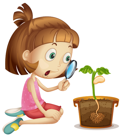 growing plant: Girl observing plant growing in pot illustration