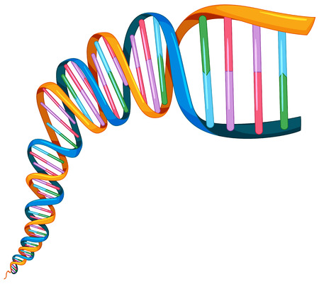DNA strand in many colors illustration
