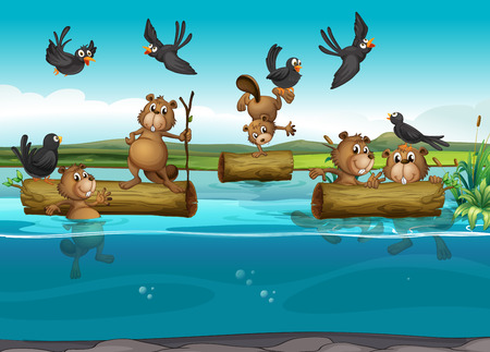 beavers: Beavers and birds in the river illustration