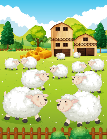 Lots of sheeps in the farm illustration