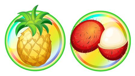 rambutan: Pineapple and rambutan on round badges illustration