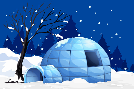 winter season: Nature scene with igloo on snowy night illustration
