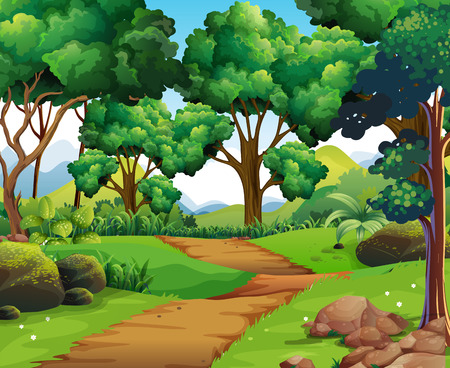 Nature scene with hiking track and trees illustration Banco de Imagens - 64620001