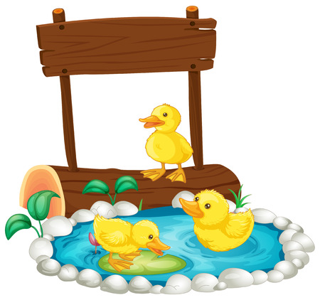 ducklings: Three ducklings swimming in the pond illustration