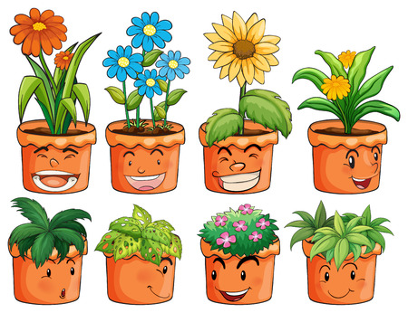 pots: Different types of plant in clay pots illustration Illustration