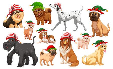 christmas hats: Dogs with christmas hats illustration