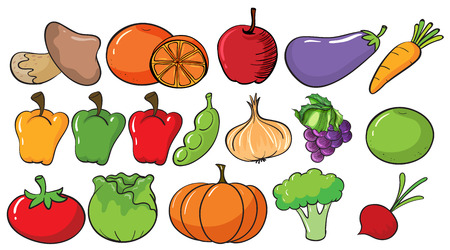 Different types of fruits and vegetables illustration