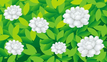 Jasmine flowers in the bush illustration