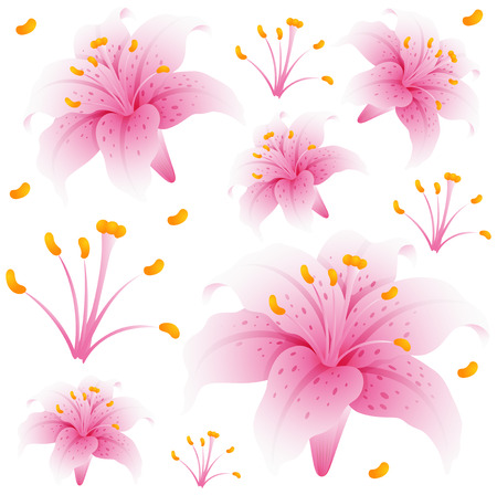 Seamless background design with pink lily flowers illustration Vectores