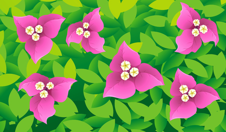 bougainvillea: Seamless background design with flowers and leafs illustration