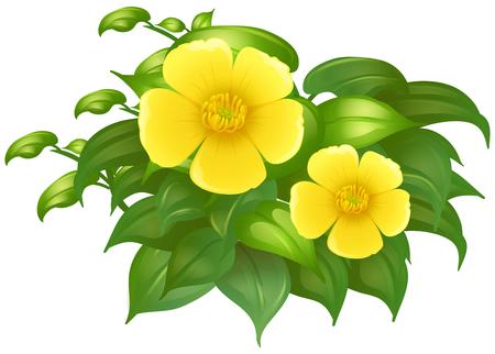 Gele bloemen in groene bush illustratie