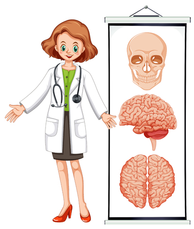 female doctor: Female doctor and brian diagram illustration